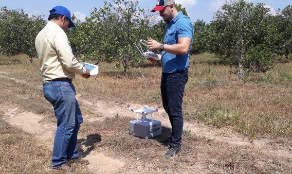inspeccion de cultivos drone 02